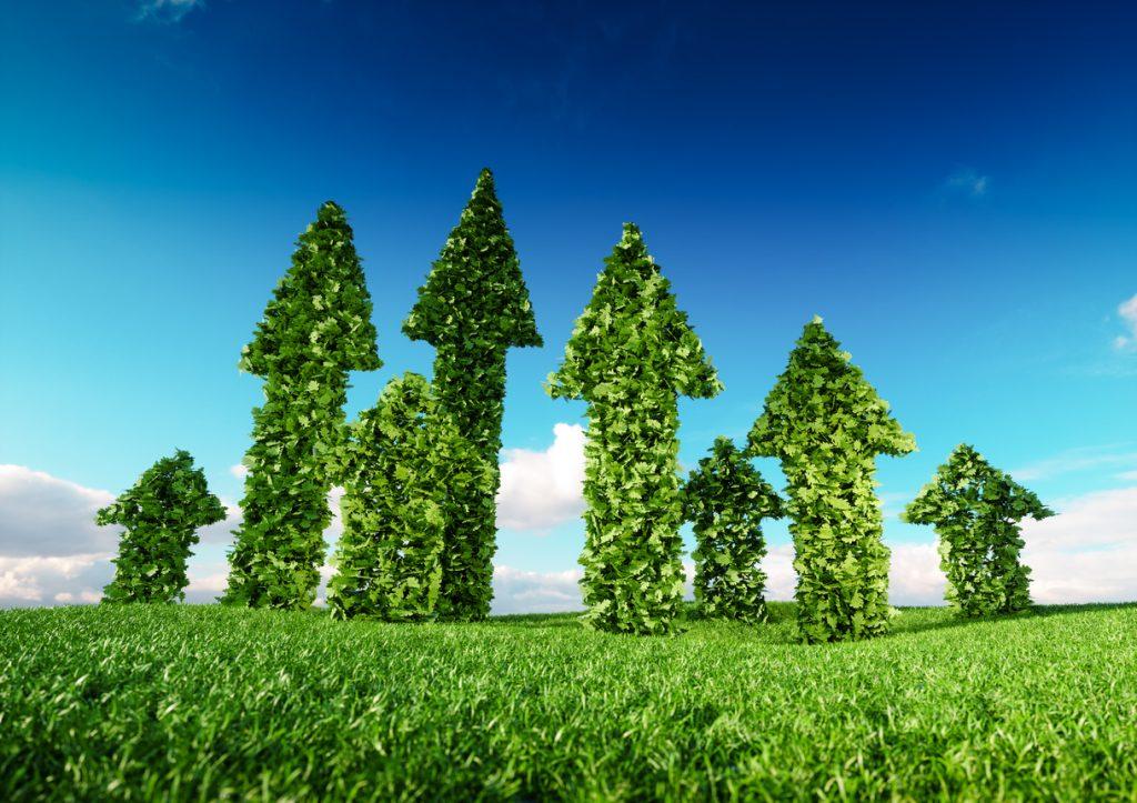 indicadores sustentáveis